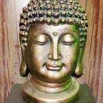 Buddha Relax Spa And Hotel Delight Sanchore